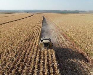 Çiftçilere müjdeler verildi! O ödemeler artık...