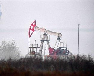 Dünya merakla bekliyordu! Petrol üretimi azaltılıyor