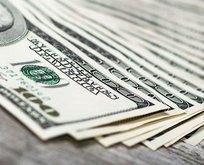 Hükümetten çok önemli dolar açıklaması