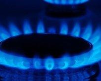 'Gaz çıkmadan fiyatlara yansır'