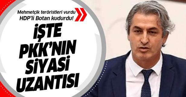 PKK'ya vurulan darbeler HDP'li Botan'ı kudurttu!
