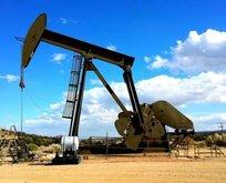 Türkiyeden petrol konusunda dev hamle