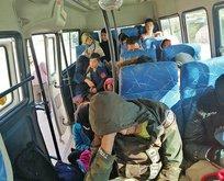 Hepsi Çanakkale'de yakalandı! Tam 83 kişi...