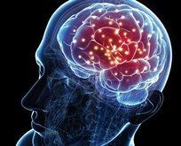 Bu besinler beyin gelişimini destekliyor