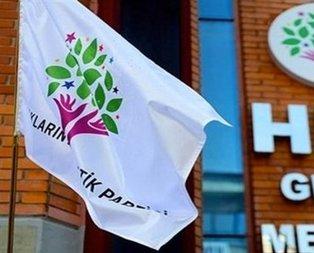 İşte HDPnin PKKnın dağ kadrosunu aratmayan yeni yönetimi
