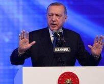 ABD'nin uydurma Başkan Erdoğan anketi tepki çekti