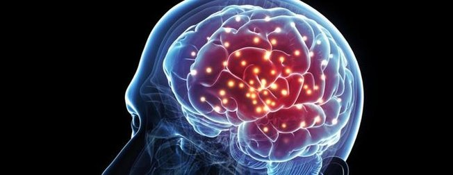 Bu besinler beyin gelişimi için olmazsa olmaz! İşte beyne iyi gelen besinler...