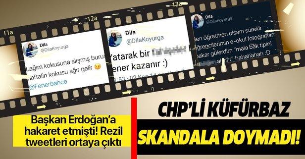 CHP'li meclis üyesi küfürbaz çıktı!