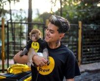 Kaçak yollardan maymun sahiplenen Mariç'e hapis!