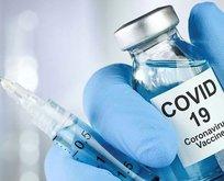 Yerli aşıda kritik gün perşembe! Başlıyor!