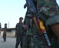 ABD ve Fransa YPG/PKK'lı silahlı eğitim!