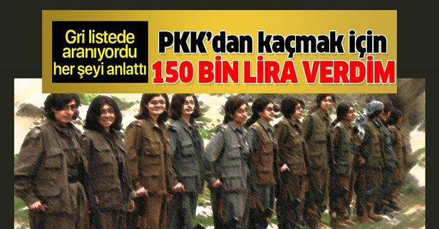 Gri listede aranan PKK'lı terörist her şeyi itiraf etti