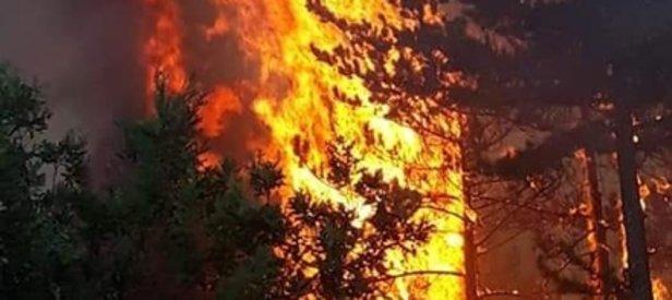 Son dakika: Alev alev yanıyor! Validen açıklama geldi