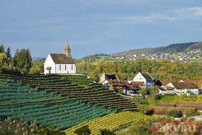 Rheinau köyü halkına 16 bin TL koşulsuz maaş bağlanacak
