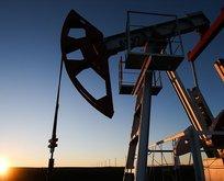 Brent petrol fiyatları kritik sınırın altında
