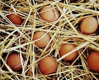 Kahvaltının yıldızı yumurtayı sakın böyle yemeyin