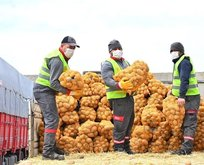 Patatesler dağıtılmaya başlandı
