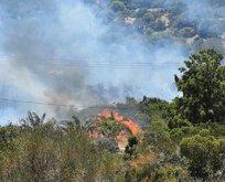 Bodrum'da korkutan yangın! Bir anda yayıldı