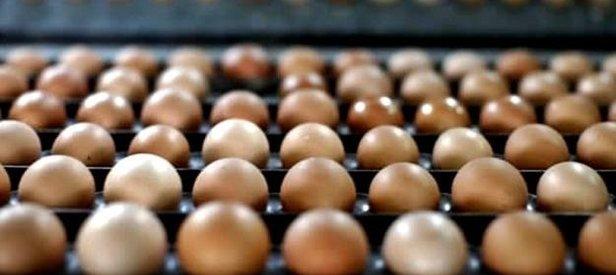 Yumurta fiyatları yılın zirvesine çıktı