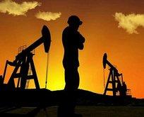 Resmen açıklandı! Türkiye bu illerde petrol arayacak