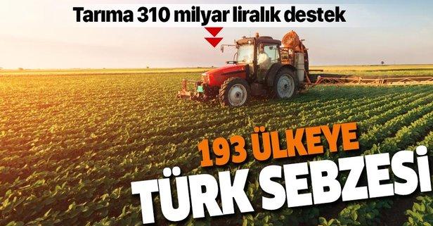193 ülkeye Türk sebzesi