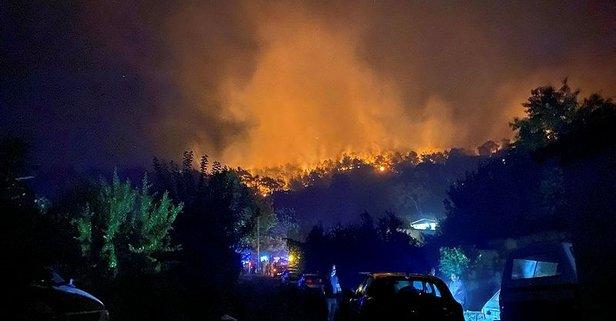 Yangını kim çıkardı? Türkiye orman yangını kim üstlendi? Ateşin Çocukları kimdir?