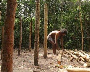 Sadece ağaç kullanarak yaptı! Milyonlar onu izledi...