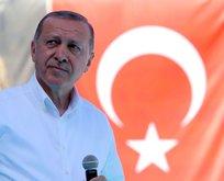Erdoğan Twitterdan duyurdu! Yol haritası hazır