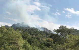 Bodrum'da orman yangını! Müdahale sürüyor