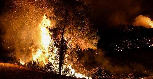 Osmaniye'deki yangınla ilgili 5 şüpheli gözaltında