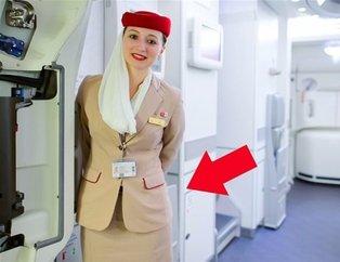 Uçaktaki hostes elini arkasına götürdü ve... Şoke eden gerçek