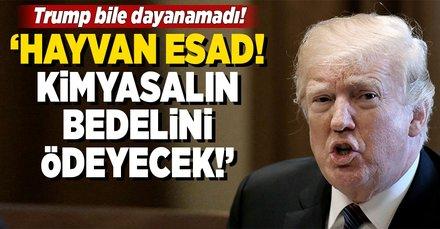 Trumptan Esada: Kimyasalın bedelini ödeyeceksin!