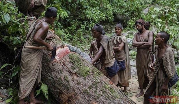 Dünyanın en ilkel kabilesi Raute Kabilesi! Maymun eti yiyerek beslenen Raute Kabilesi görenleri şaşkına çeviriyor