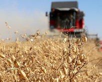Mazot gübre desteği ne zaman yatacak? Çiftçilere 2021 mazot gübre desteği ne kadar olacak?