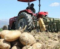 Başkan Erdoğan'ın müjdesi çiftçiyi sevince boğdu