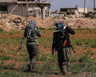 Fırat'ın doğusundaki etnik terör yapılanması