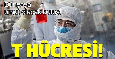 Bilim insanları ilk kez duyurdu! Koronavirüsü ağır geçiren hastalara yeni tedavi yöntemi! T hücresi nedir?