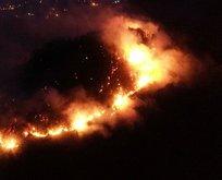 Giresun'da orman yangını!