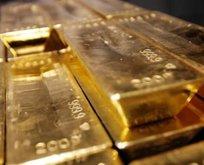 Rekor kırıldı! 2040 ton altın...