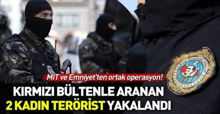Bursa'da MİT ve Emniyet'ten ortak operasyon! Kırmızı bültenle aranan DEAŞ'lı teröristler yakalandı