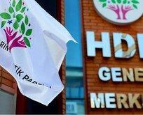 HDP AYM'den ek süre istedi