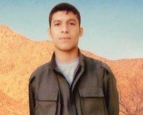 HDP'den polis katili teröristi kahraman ilan etti