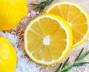 Limon selülite son