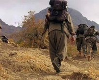 PKK'da çözülmeler devam ediyor! 2 terörist daha teslim oldu