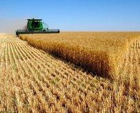 Türk tarımına Ar-Ge desteği