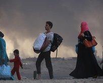 Musul'da 3 bin 802 kişi göç etti