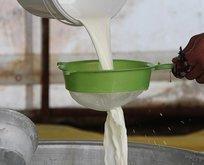 Çiğ süt için ilave destek