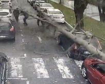 İstanbul'da ağaç insanların üzerine devrildi!
