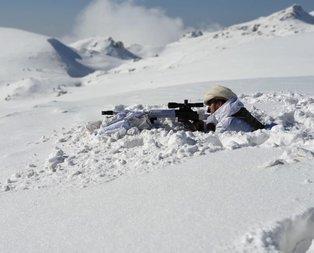 Cudi'de PKK'nın 6 ini daha bulundu