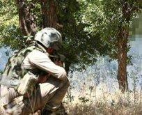 İkna edilen PKK'lı teröristler teslim oldu